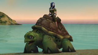 Riding Turtle